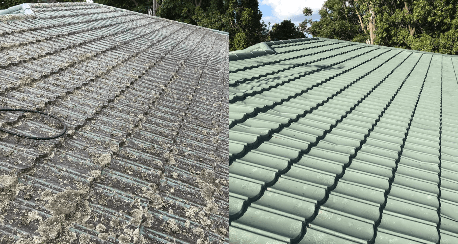 Roof Washing Auckland Roof Cleaning Treatment North