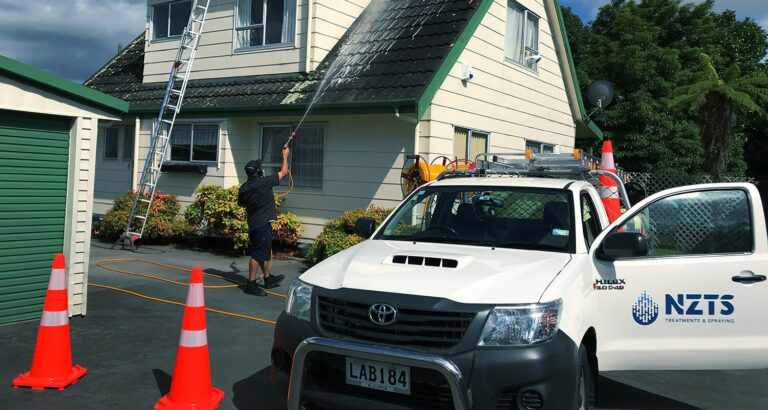 NZTS professional washes the roof - house washing guide