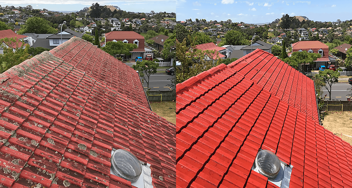 Before and After NZTS Roof Cleaning