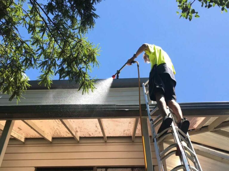 5 Exterior House Washing Secrets Experts Don't Want You to Know Auckland