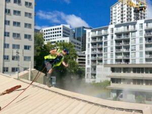 NZTS Commercial roof washing