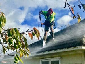 Waterblasting during NZTS roof washing