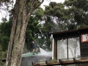 NZTS expert roof cleaning service