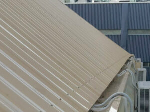 Freshly washed gutter and roof after NZTS roof cleaning