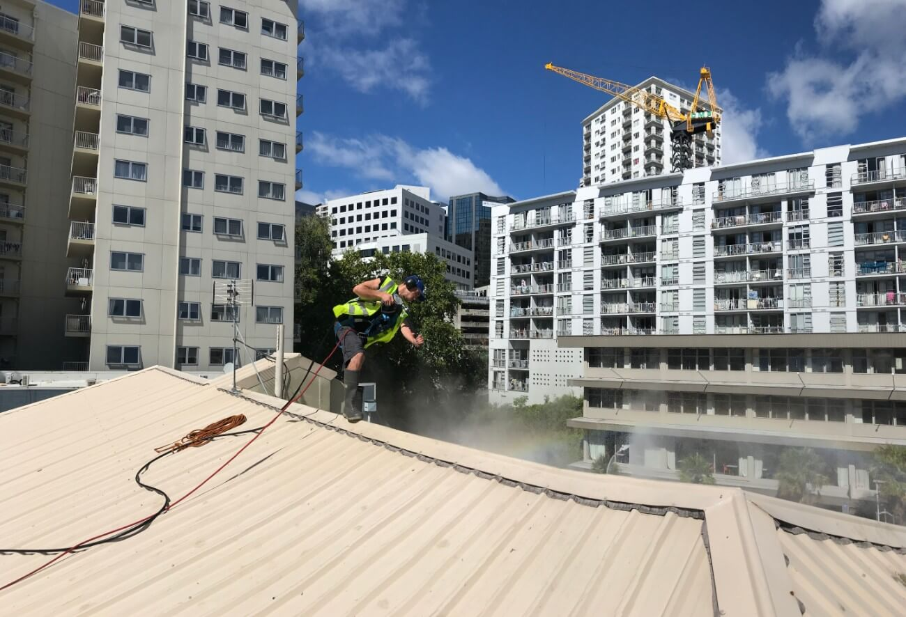 NZTS roof washing in Auckland city