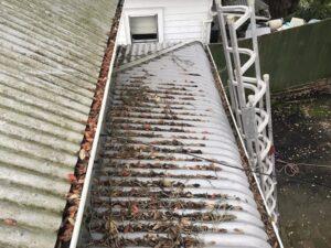 veranda roof wash ponsonby before nzts