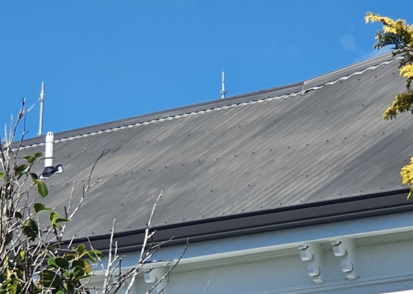 Roof oxidisation nzts